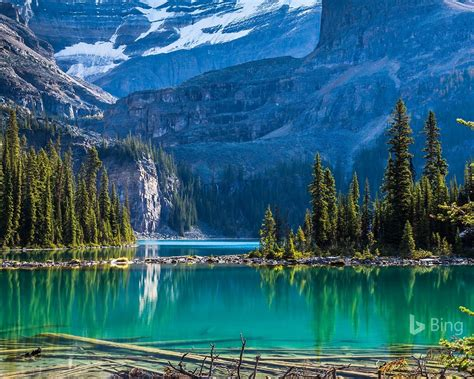 yoho national park lake ohara bing  preview