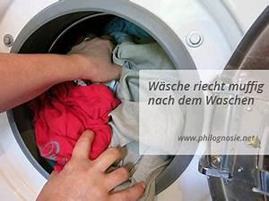 Abfluss Stinkt Natron Essig : waschmaschine stinkt hausmittel backpulver wohn design ~ Bigdaddyawards.com Haus und Dekorationen