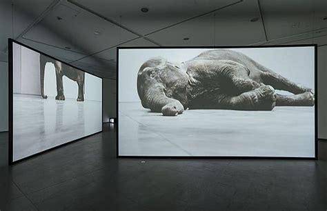 Bauhaus Ausstellung Berlin by Bauhaus Und Fotografie Ausstellung Nrw Forum D 252 Sseldorf