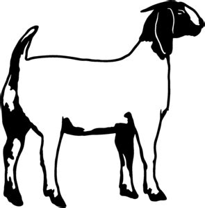 goat clipart black and white boer goat clipart clipart panda free clipart images