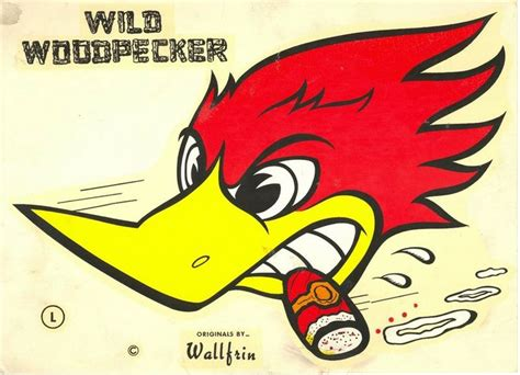 Best 25+ Woody Woodpecker Ideas On Pinterest