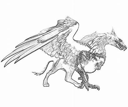 Dragon Dogma Coloring Pages Monsters Dragons Griffin