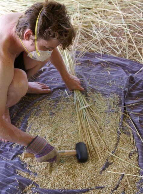 threshing floor meaning sonora wheat harvest winwinfarm