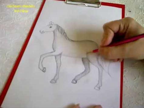 zeichnen lernen fuer anfaenger pferd malen pferdeportrait