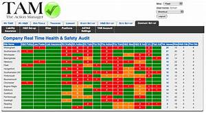 This is why you should buy the action manager the health for Safety dashboard template