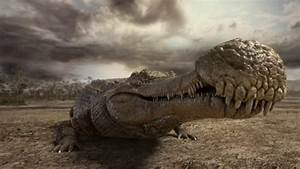 World's top 6 biggest prehistoric crocodiles ever lived ...