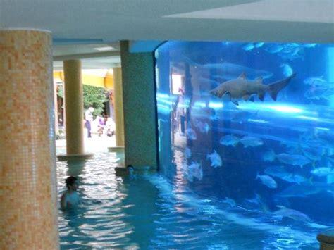 chambre las vegas chambre picture of golden nugget hotel las vegas