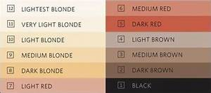 Hair Colors For Your Skin Tone Chart Color Scale For Perfect Hair Color Hair Colors