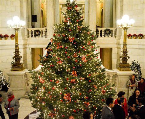 rhode island christmas trees