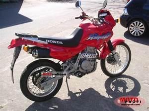 Honda Dominator 650 Fiche Technique : 1998 honda nx650 dominator moto zombdrive com ~ Medecine-chirurgie-esthetiques.com Avis de Voitures