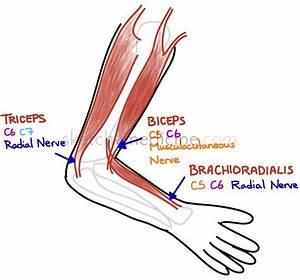 medicine for achilles tendon pain