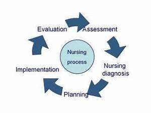 Ida Jean Orlando U2019s Nursing Process Theory