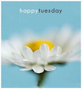 Happy Tuesday Pictures, Photos, and Images for Facebook ...