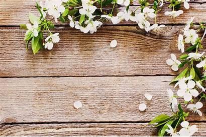 Farmhouse Flower Flowers Rustic Background Desktop Backgrounds
