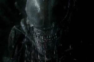 'Alien: Covenant' is Missing What Makes the Alien So ...