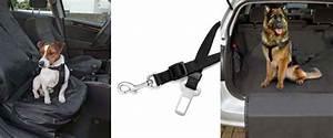 Protection Chien Voiture : en voiture avec son chien bien s 39 quiper voyager et ~ Dallasstarsshop.com Idées de Décoration