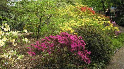 Botanischer Garten Des Kit öffnungszeiten by Karlsruhe Botanischer Garten Des Kit