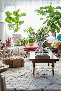 Zimmerpflanzen Feng Shui : sch ne zimmerpflanzen moderne pflegeleichte topfpflanzen zimmerpflanzen pinterest ~ Indierocktalk.com Haus und Dekorationen