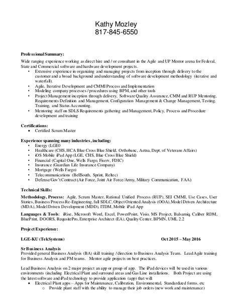 User Experience Resume Summary by Mozley Kathy Resume 2016
