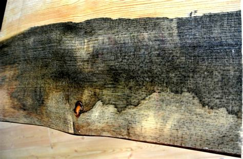 Beetle Kill Pine Lumber Boulder by Beetle Kill Pine Table Tops Sustainable Lumber Co