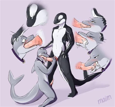 Rule 34 Black Cetacean Cum Dolphin Gay Grey Male Marine