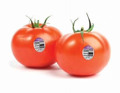 Tomatoes Juicy Produce Beefsteak Beef