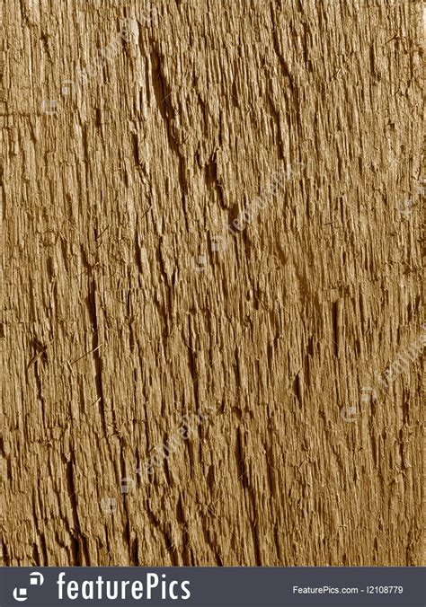 texture rough wood texture macro close  stock