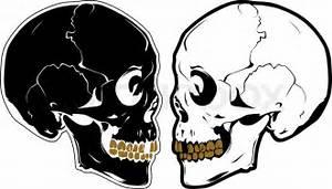 Vector Skulls In Profile