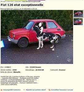 Fiat 500 Le Bon Coin : le bon coin voitures bourgogne ~ Gottalentnigeria.com Avis de Voitures