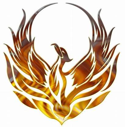 Flame Phoenix Graphics Decal Clipart Designs Legendary