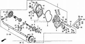 Honda Hra216 Sxa Lawn Mower  Jpn  Vin  Macr