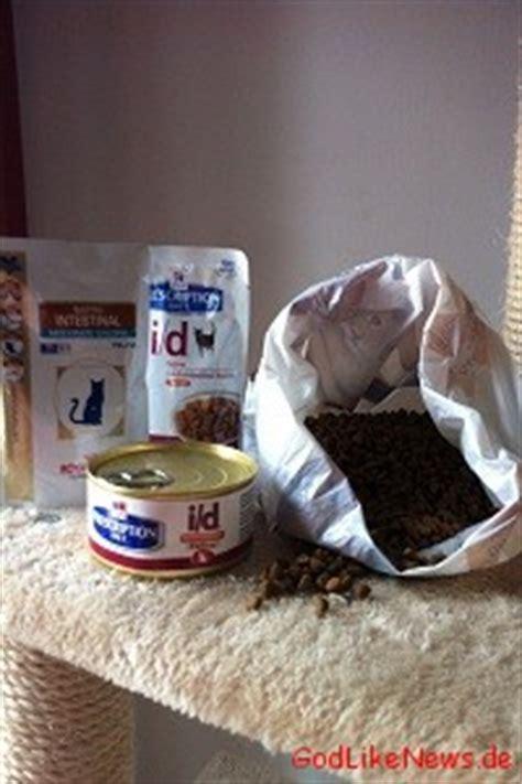 durchfallerbrechen bei katzen hausmittel und effektive
