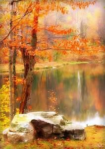 13, Inspirational, Autumn, Pictures