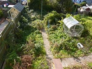 Clearing our daughter & son-in-law's garden....NO Robins ...