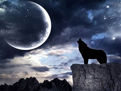 Howling Wolf Moon Dark Wolves Loup Wallpapers