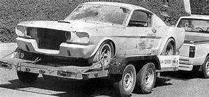 mustang fastback & mustang shelby 1966