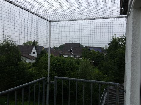 fenster katzensicher machen katzennetz f 252 r balkon in bonn fenster katzensicher machen katzennetze nrw der katzennetz