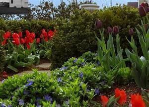 Welche Pflanzen Passen Gut Zu Hortensien : bodendecker vinca minor im garten pflanzen und pflegen ~ Lizthompson.info Haus und Dekorationen
