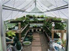 Backyard Greenhouses Greenhouse Testimonials