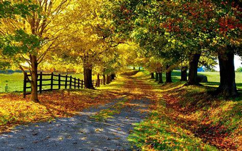秋天唯美风景壁纸图片_美到人心底的秋景_风景壁纸_