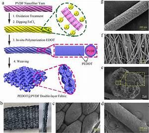 A  Schematic Illustrations For Preparation Of Pedot Pvdf Nanofiber