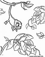 hd wallpapers coloriage a imprimer raiponce pascal - Raiponce Pascal