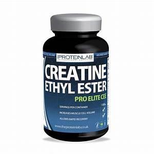 Creatine Ethyl Ester Vs Creatine Monohydrate