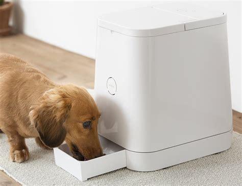 Automatic Pet Feeder » Gadget Flow