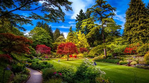 Free download Colorful Park Spring Nature HD Wallpaper ...