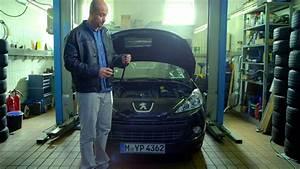 Peugeot 206 Zahnriemen : wusstet ihr schon zahnriemen youtube ~ Jslefanu.com Haus und Dekorationen