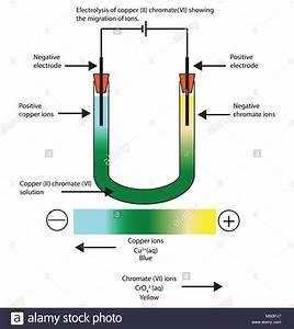 Diagram Of The Electrolysis Of Copper  Ii  Chromate  Vi