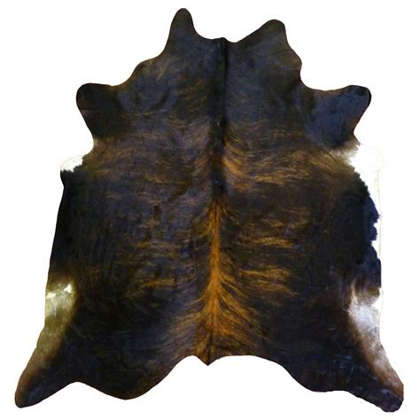 How To A Cowhide by Black Brindle Cowhide Large Overstock