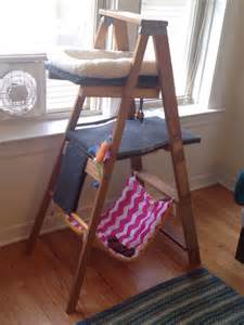 easy diy cat tree diy cat tree made from an wooden ladder outdoor