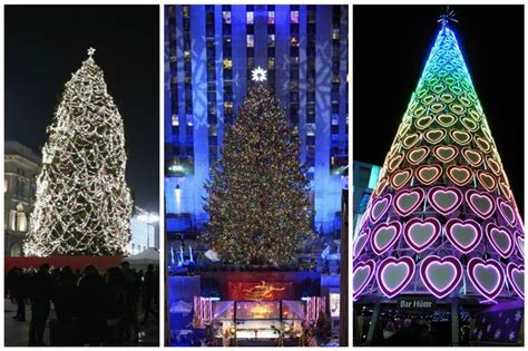 whats the best christmas tree which city has the best tree see how liverpool compares liverpool echo